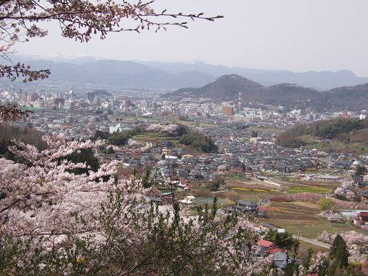 2008_0416三春の桜、花見山の桜0071-1.JPG