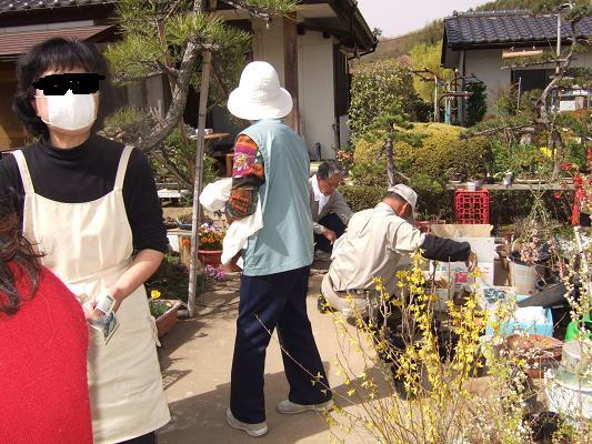 2008_0416三春の桜、花見山の桜0083-9.JPG